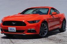 新車 フォード / マスタング     GTプレミアム 6MT